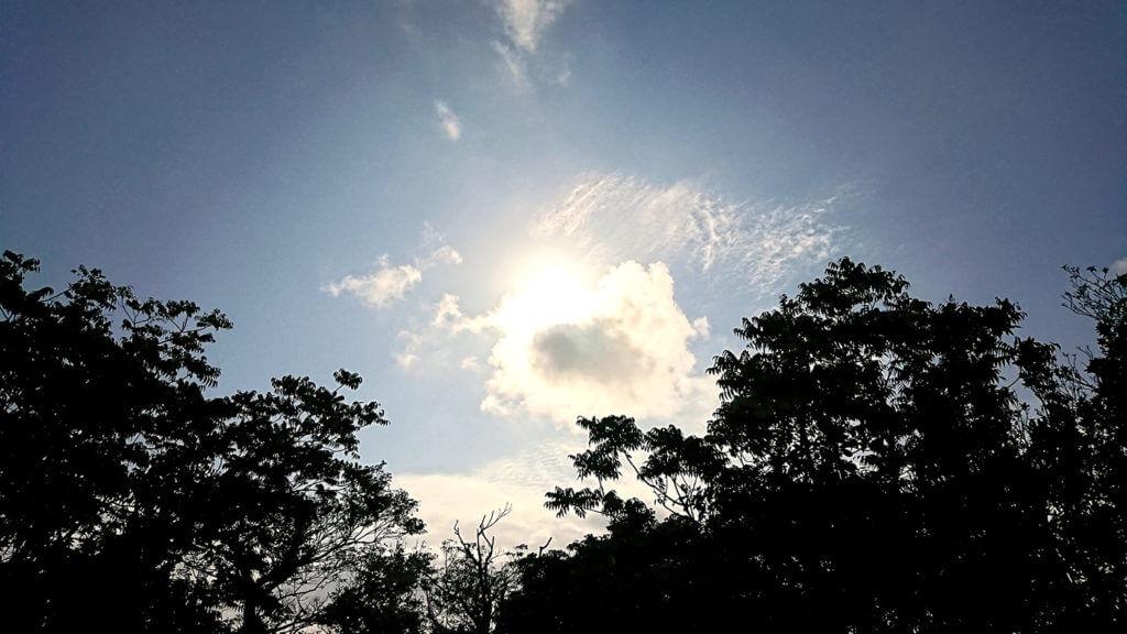 玉城城跡から空を見上げた写真
